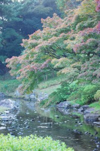 栗林公園(高松市)紅葉